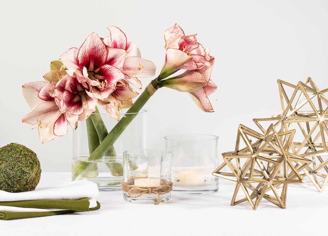 Tischdeko Weihnachten Weiß und Gold mit Amaryllis